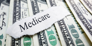expenses covered by Medigap Plan L